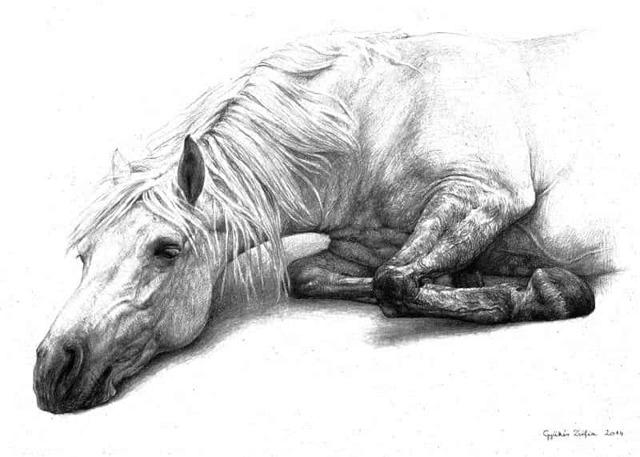 Хорошее отношение к лошадям - краткое содержание стиха Маяковского